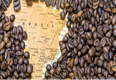 Кой произвежда кафето ?