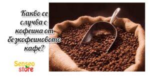 Read more about the article Какво се случва с вашия кофеин ?